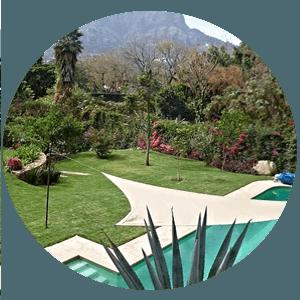 paisajismo, paisajismo urbano, paisajes verdes, muros verdes, azoteas verdes