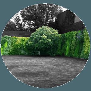 Muros verdes, muros y azoteas verdes, jardines verticales, verde 360.