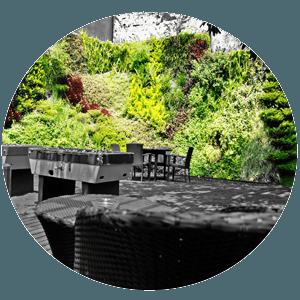 muros y azoteas verdes, sostenible, jardines verticales