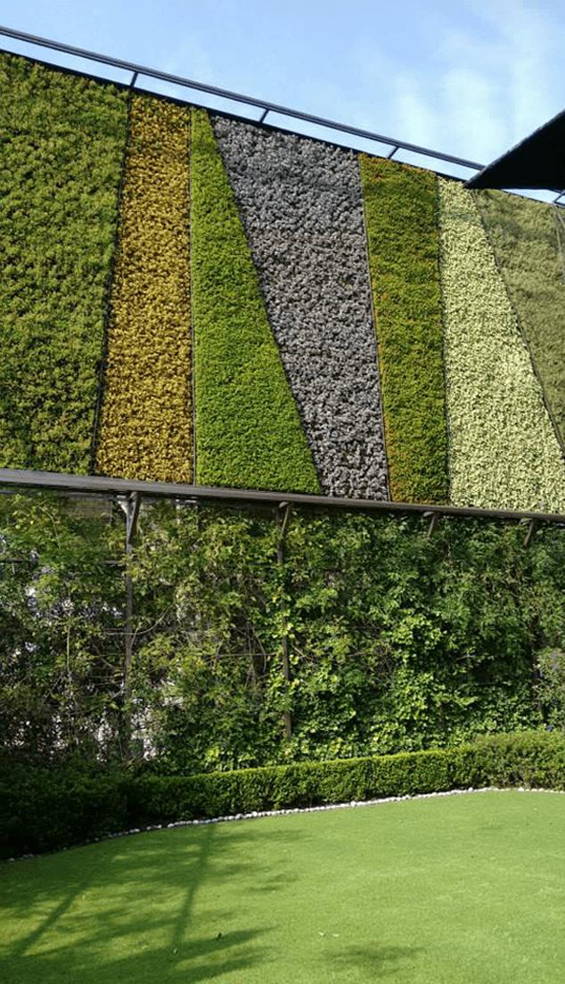 Muros verdes muros y azoteas verdes for Materiales para un muro verde